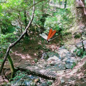 Ponte e libellula in legno - Foto di Sossupermamma -